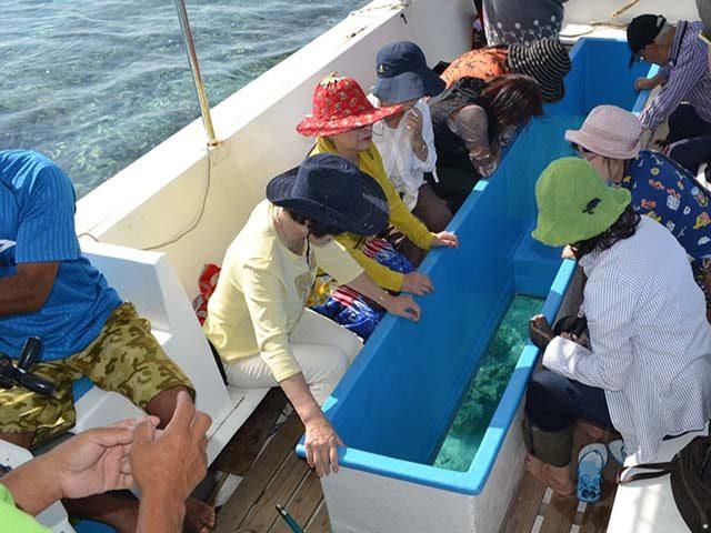 百合ヶ浜グラスボート