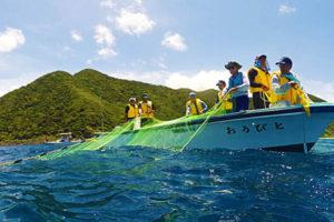 国直集落まるごと体験!【とびうおロープ引き漁ツアー】