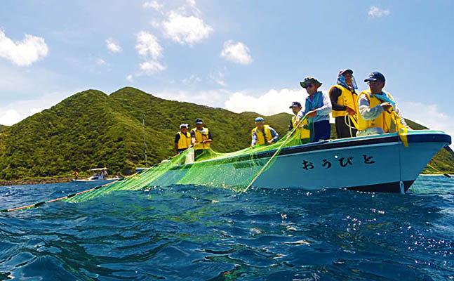 とびうおロープ引き漁